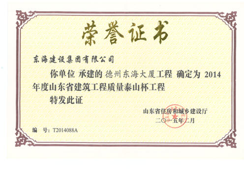 泰山杯奖证书