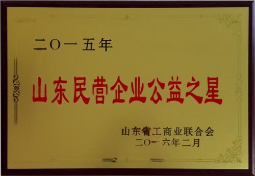山东民营企业公益之星