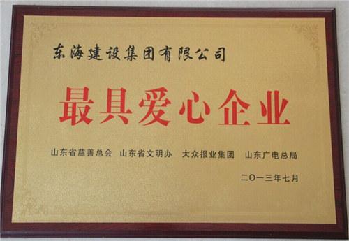 山东省最具爱心企业