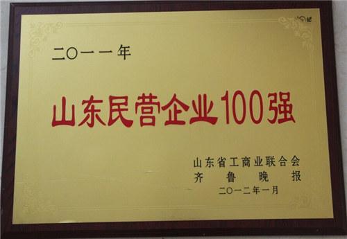 山东省民营企业100强
