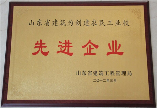 山东省创建农民工业校先进企业