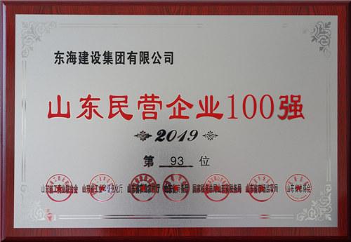 山东民营企业100强