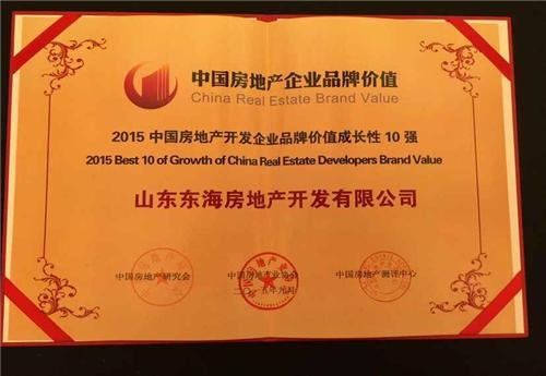 中国房地产开发企业品牌价值成长性10强